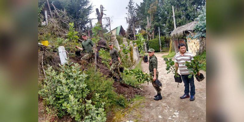 Soldados plantaron 180 árboles como aporte al medio ambiente