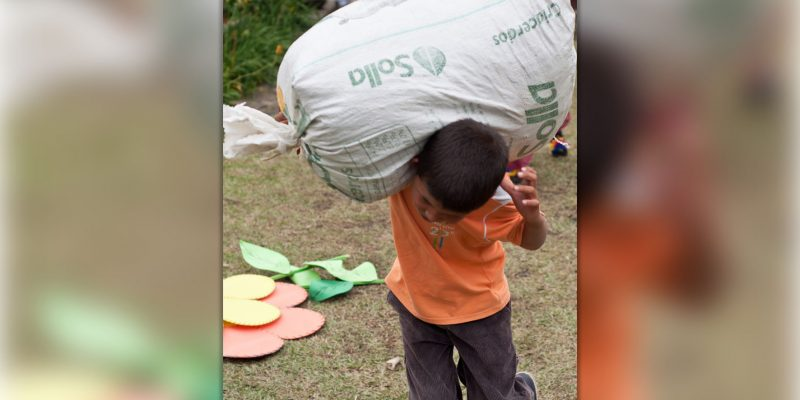 MinTrabajo y Gobernacion de Cundinamarca unidos en la prevencion y erradicacion del trabajo infantil