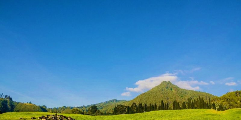 cerro D Zipa