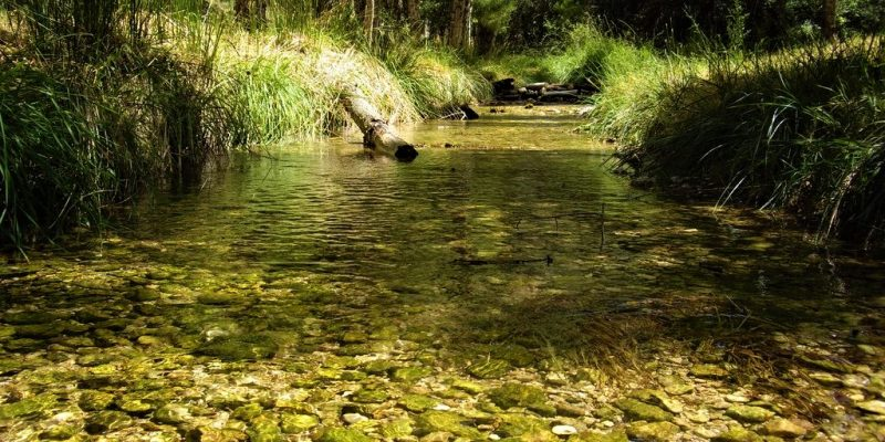 Yo protejo agua para todos la estrategia para conservar el recurso hidrico