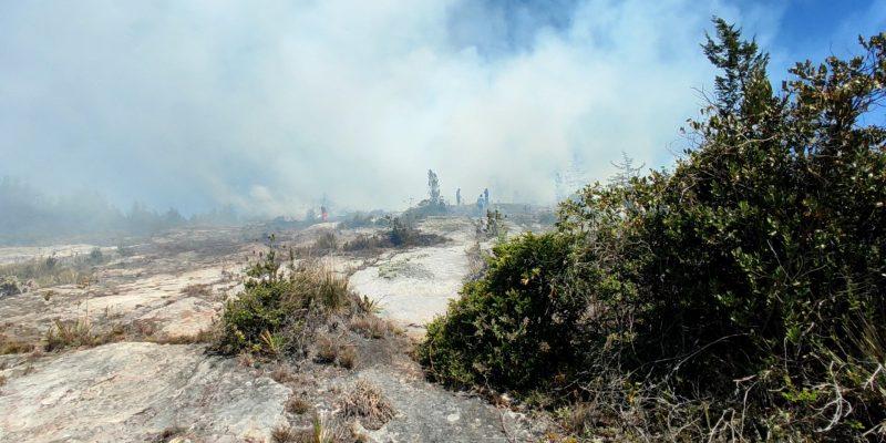 Dos incendios forestales se presentan a esta hora en Zipaquira