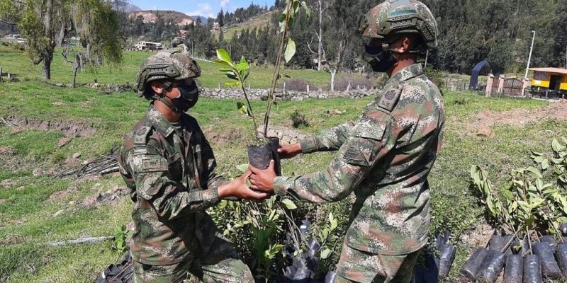 Ejercito Nacional siembra vida en Cundinamarca